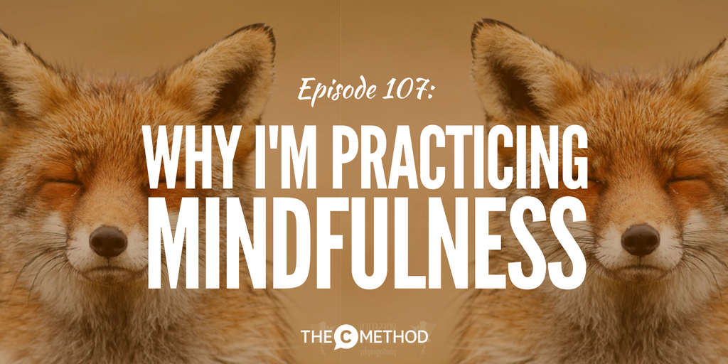 mindfulness leadership confidence communication with christina canters